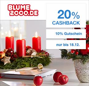 Blume2000.de: 20% Cashback + 10% Gutschein